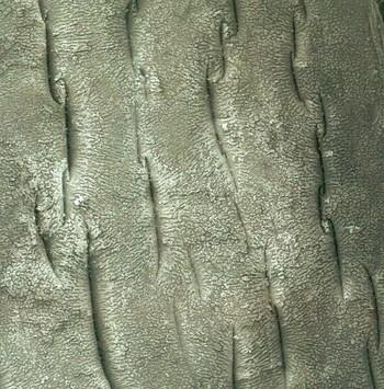 Obr. 5 Detail vnitřního povrchu polypropylenové trubky (zvětšení 50×)